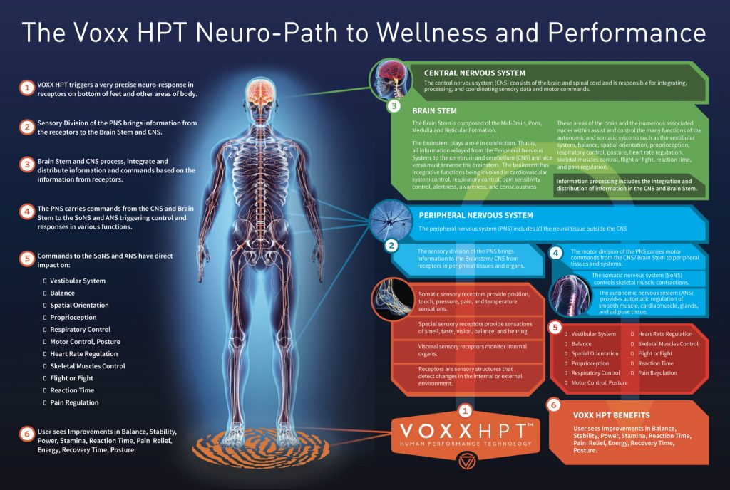 How Voxx HPT Technology Works Image