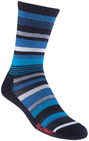 VoxxTerra Blue Stripe Image Flipped